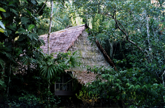 The Explorama Lodge in Peru is a good example for ecotourism in action.